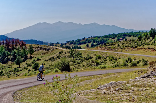 Bulgaria - West Rodopi & Pirin Mountains (2 weeks)
