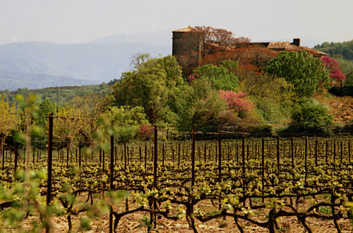 France - Languedoc (land only)